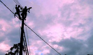 petugas memasang jaringan listrik